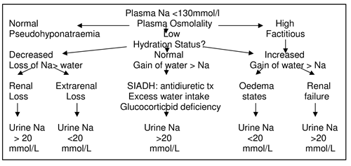 Acute Renal Failure In Paediatrics Management And Investigation